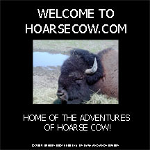 to hoarsecow.com